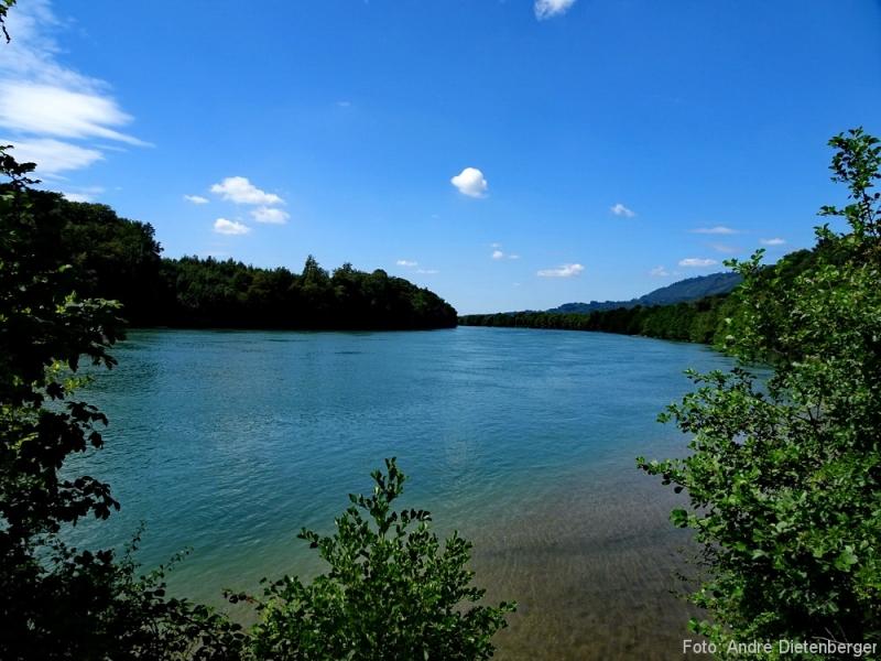 Murg - Rhein