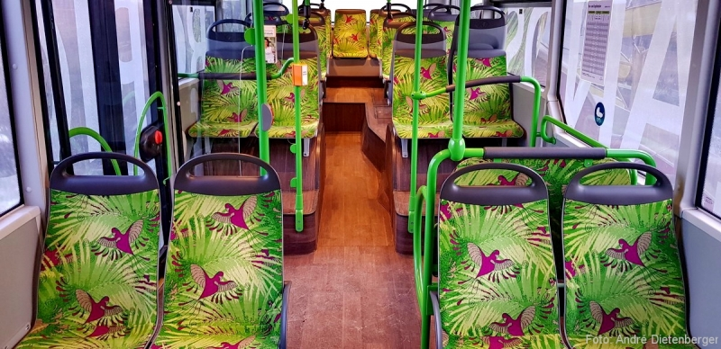 Tropical Islands Shuttle-Bus