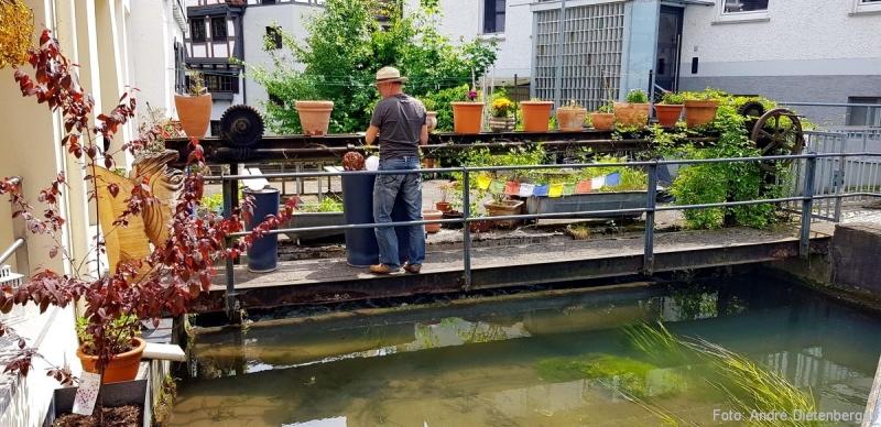 Fischerviertel - Blumenmann
