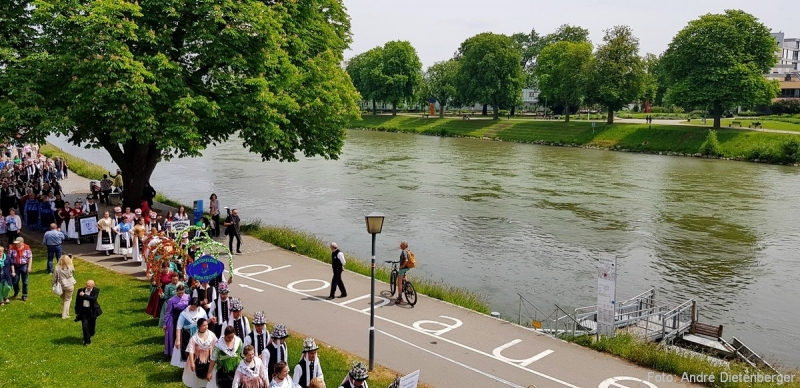 Donauschwaben