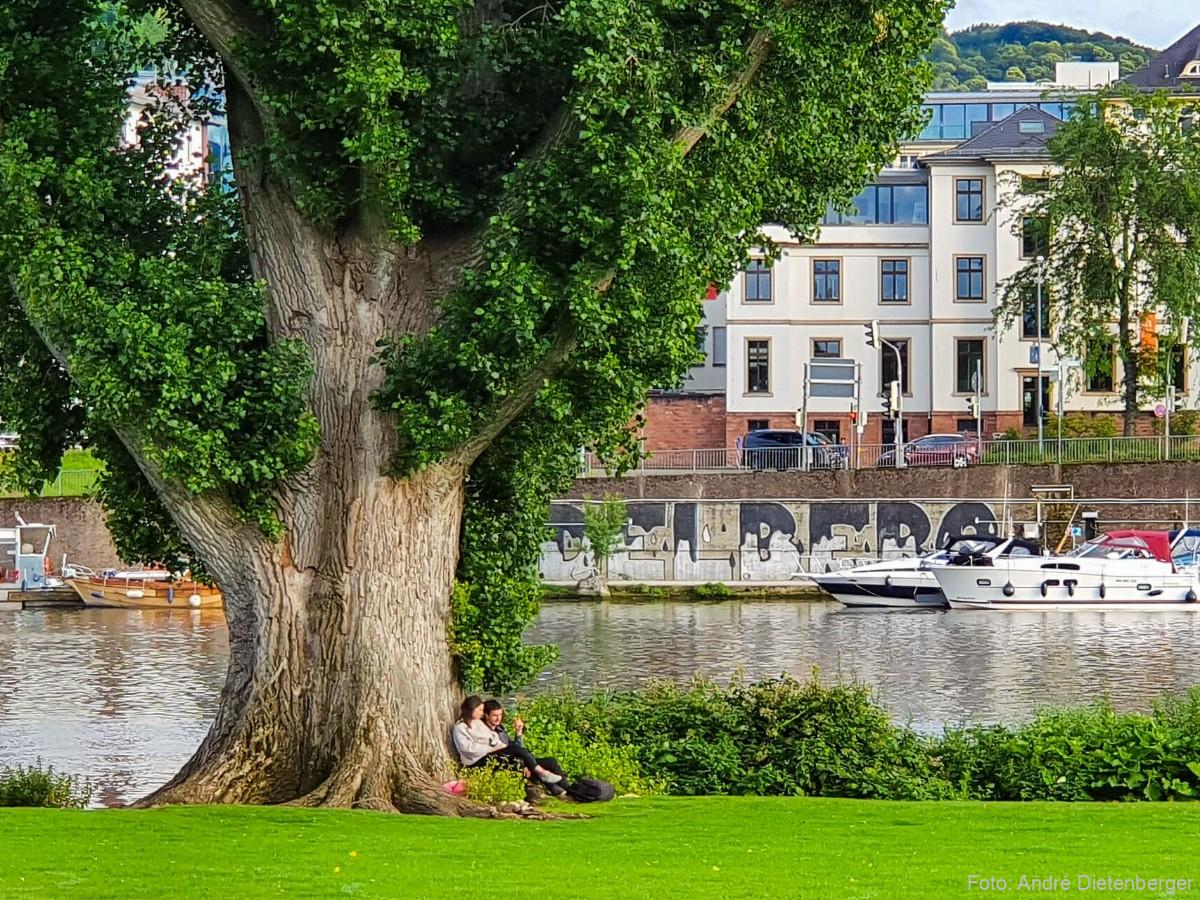Heidelberger Neckarufer zum entspannen