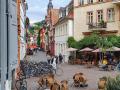 Heidelberger Cafés und Bars