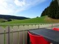 Kuckucksnest - Balkon