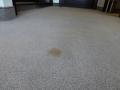 Swissotel - Flecken auf Teppich