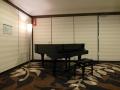 Swissotel - Piano