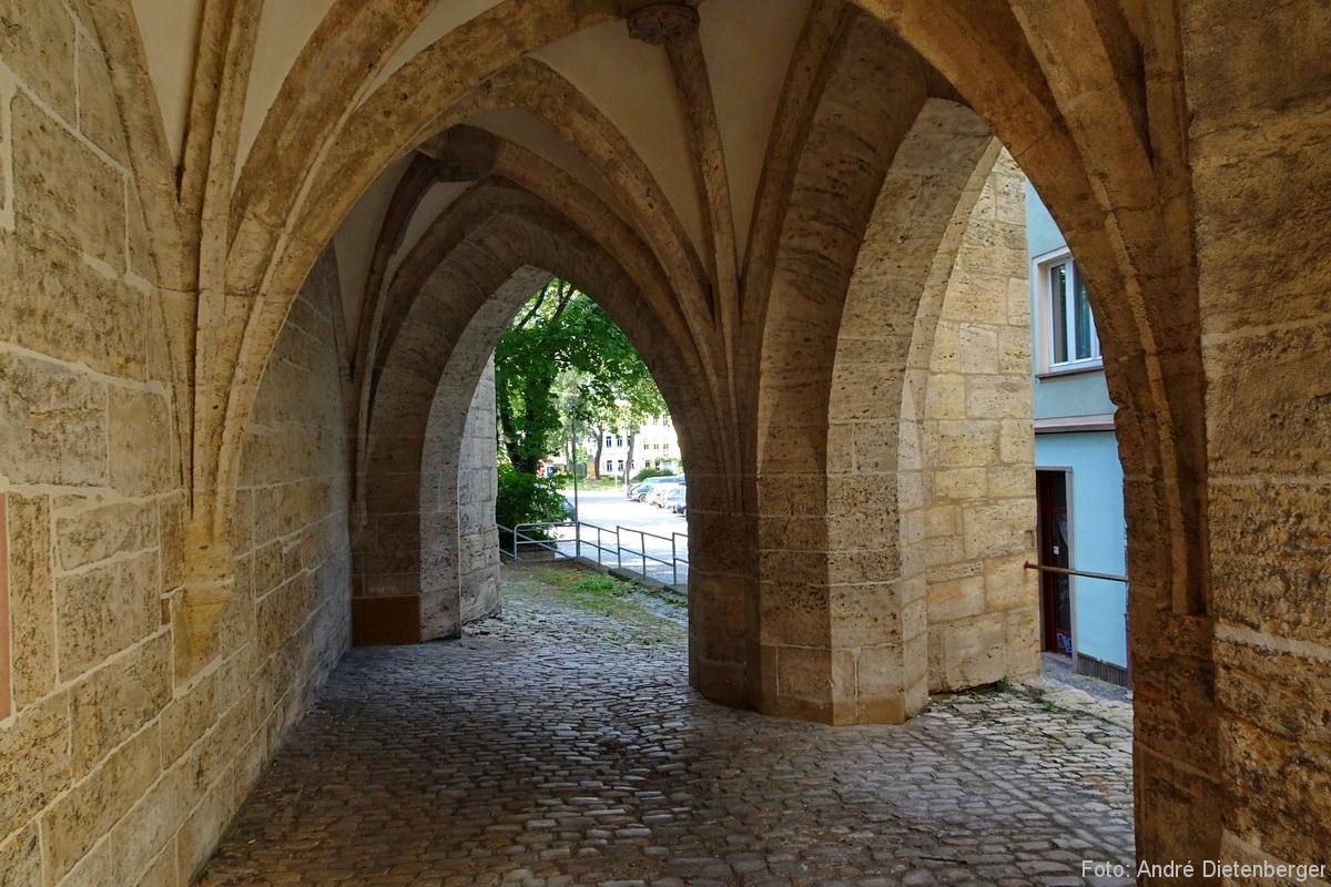 Ara - Sieben Wunder von Jena