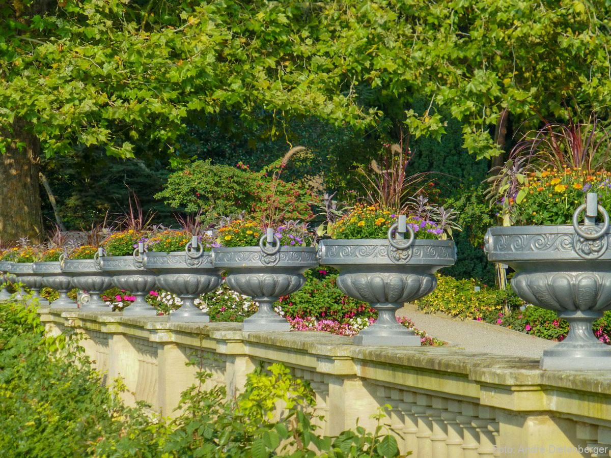 Mainau - Garten