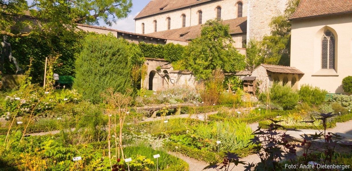 Schaffhausen - Kloster Allerheiligen Heilkräutergarten