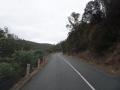 typische Tasmanische Straße