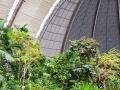 Tropical Islands Regenwald und Halle
