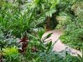 Tropical Islands Regenwald Weg