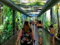 Tropical Islands AMAZONIA Durchgang