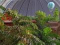 Tropical Islands Regenwald, Ballon und Halle